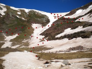 Lots of snow remains on the last 500 vertical feet to the top- pass elevation is around 12,450 feet.