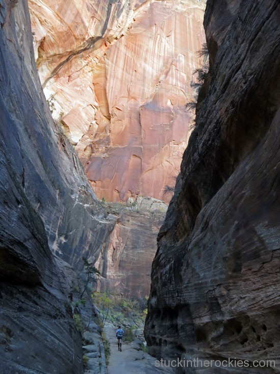 Weeping rock trail, zion traverse