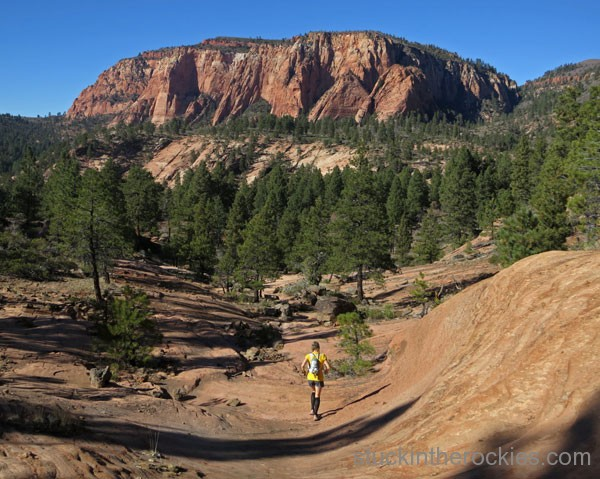 Wildcat Trail, zion national park, zion traverse