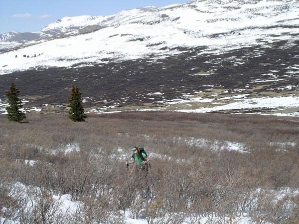 ski bierstadt