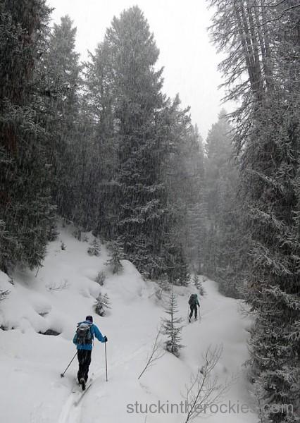 tincup trail