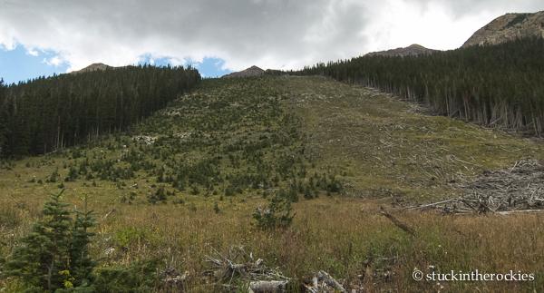 avalanche path, east maroon creek