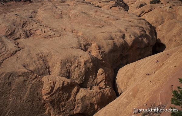 capitol reef, waterpocket fold, muley twist canyon, slot canyon