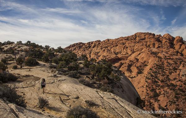 capitol reef, waterpocket fold, muley twist canyon