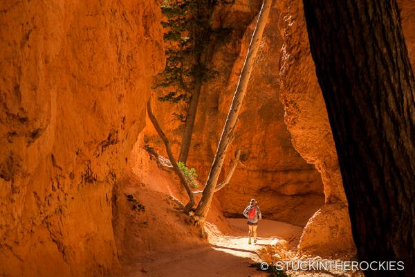 bryce-canyon-15