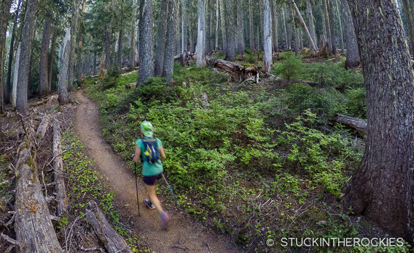 Christy Mahon ascends to Granite Creek on the Wonderland Trail