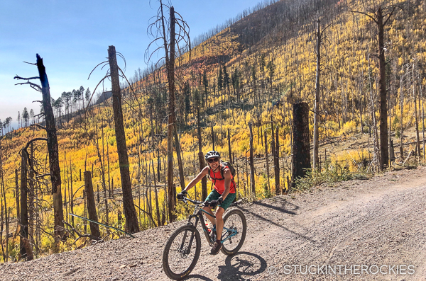 Riding the Waterline Road of the Mount Humphrey's Loop.