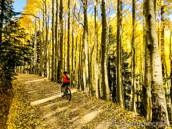 Fall colors on the bike ride around Mount Humphrey's
