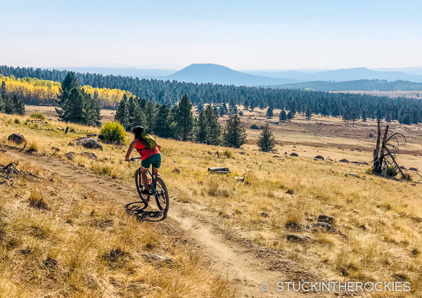 Cruising the west side of the San Francisco Peaks.