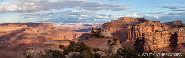 The view from the Shafer Trail Overlook.