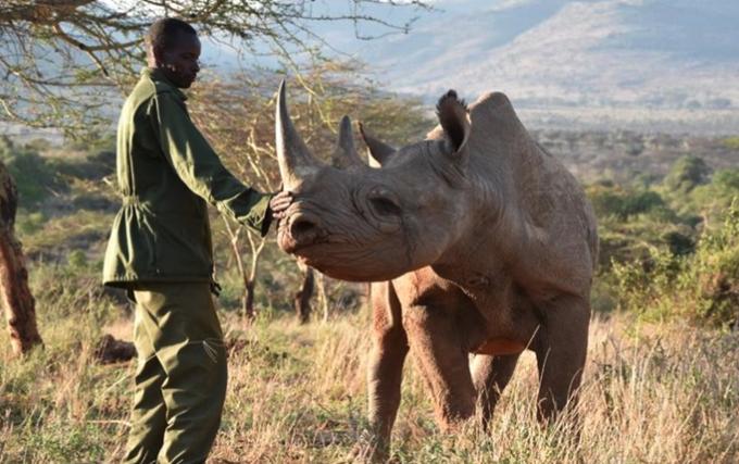 The Wild Women Ultra in Kenya